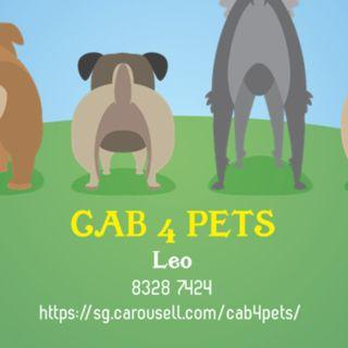 CAB4PET - SG54 PROMOTION - S$54 FOR 2 WAY TRIPS THIS WEEK!