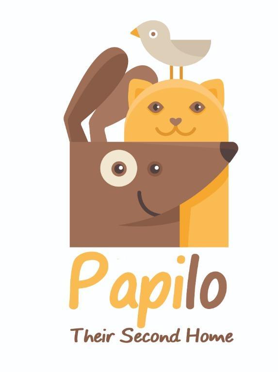 PAPILO - Pet Hotel Dog Boarding Penitipan Anjing Rumahan di Serpong