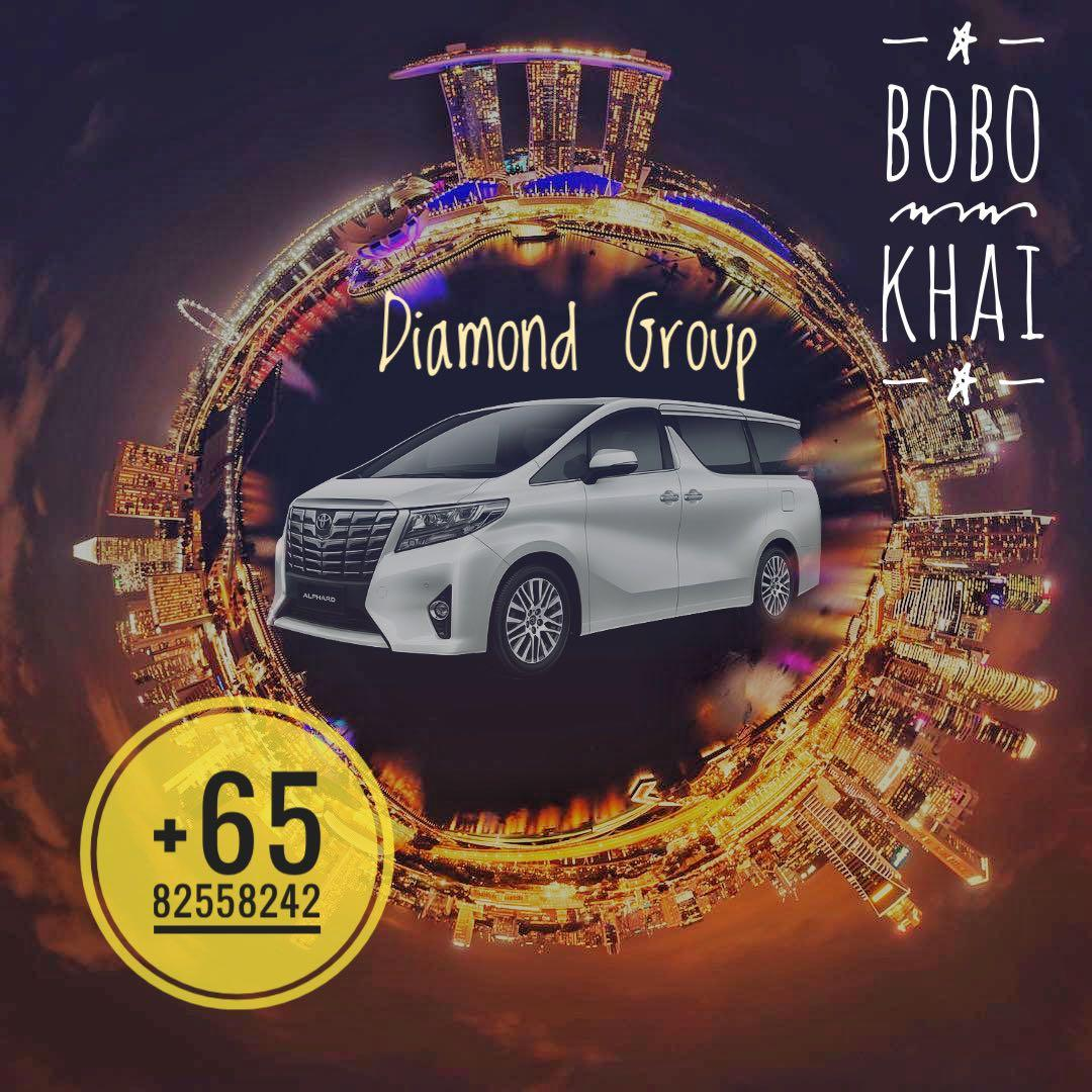 Professional limousine with drivers National Day Promo