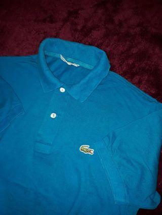 Polo Shirt Lacoste fred perry adidas uniqlo