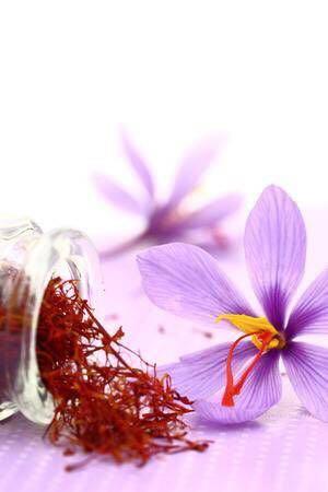 Saffron Finest Red Gold