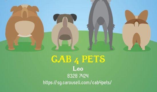Pet taxi - cab4pet