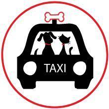 Taxi for pet - cab4pet