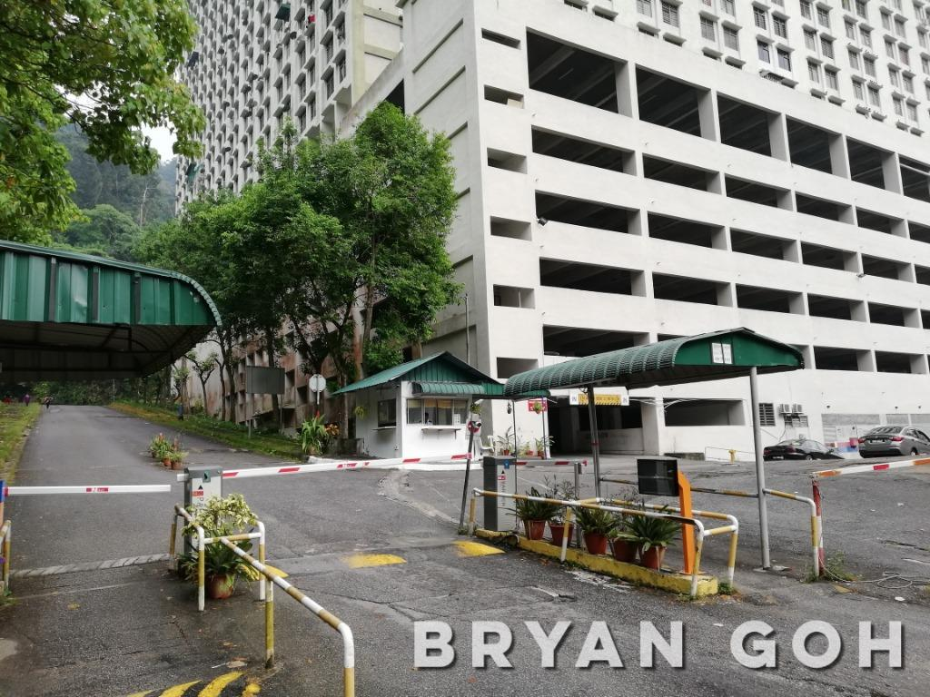 Paya Terubong Green Garden Apartment Near Eco Terraces & Suria Vista