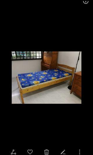 🚚 Single Bed Frame, nice solid pine wood.