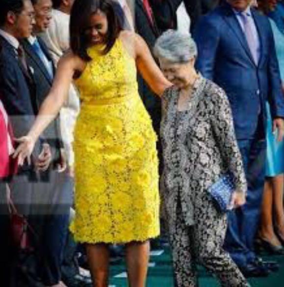 Momentous Dinorsaur Pouch carried by Mrs Lee to White House