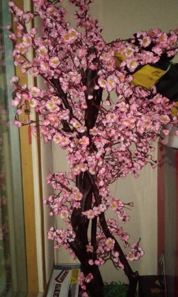 Bunga Sakura Imlek Dekorasi Perabotan Rumah Di Carousell