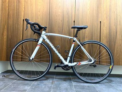 Specialized Allez Sport 2016 Road Bike (52cm)
