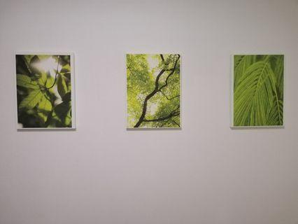 Singapore Greenery Canvas set
