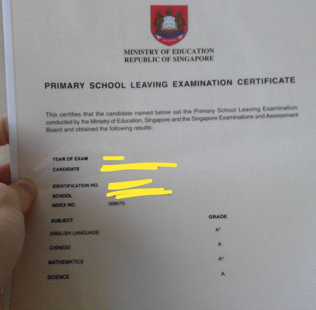 Primary/Secondary Tuition