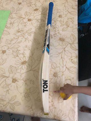 Cricket bat Ss Ton