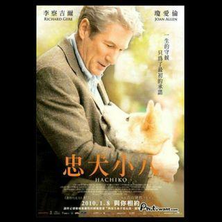 中文原版 69 x 98 cm 大型電影海報 -- 忠犬小八 (2010)[購滿$600-免運費]