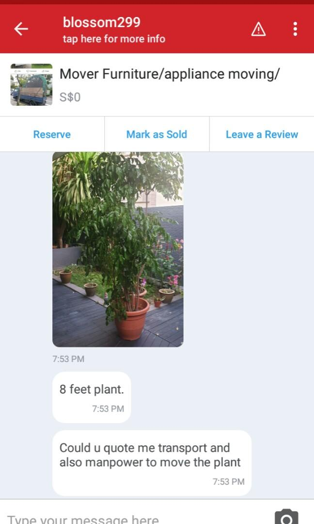 Moved a potted tree from location A to location B last night