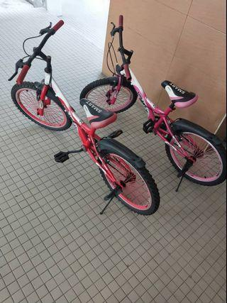 2 bicycle in 300 RM tyers size 20 inches