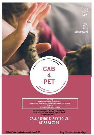 Ride for pet - cab4pets