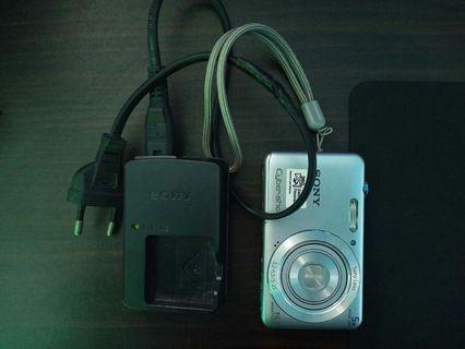 SONY Cyber-shot Camera DSC-W710 (16.1 Megapixel)