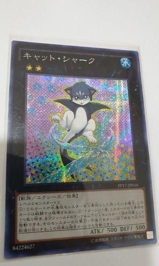 Cat Shark PP17-JP016 Secret