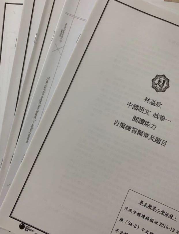 中文 yylam 2018-19 閱讀能力練習