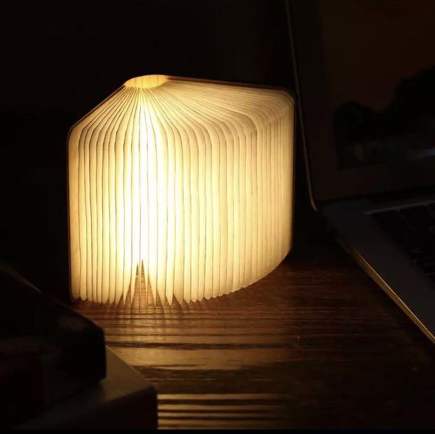 Unique Mini Palm size LED book lamp