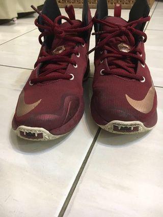 Nike 4Y Lebron 23cm