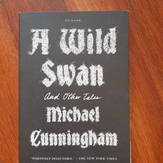 A Wild Swan and Other Tales by Michael Cunningham