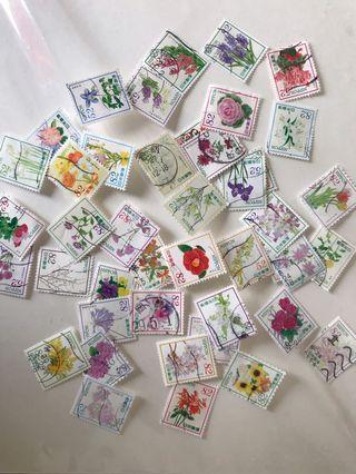 Japan flower series 1