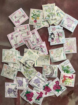 Japan flower series 2
