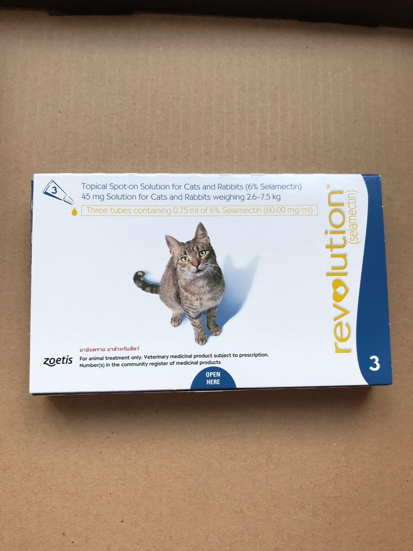 Revolution Cat 貓