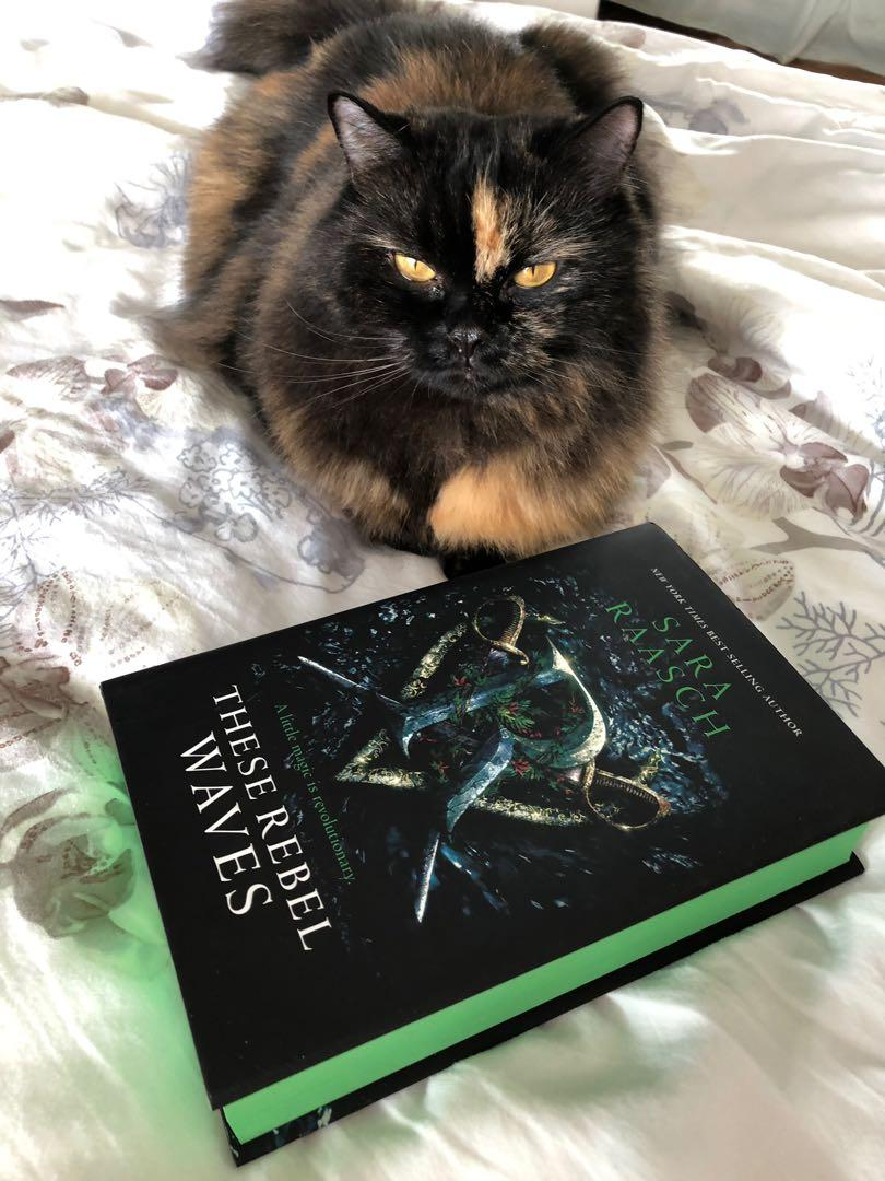 These Rebel Waves (FairyLoot Edition) by Sara Raasch