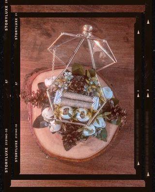 terrarium hantaran cincin