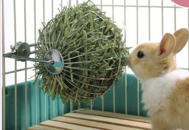 Rabbit hay ball