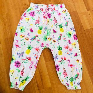 Next Pants