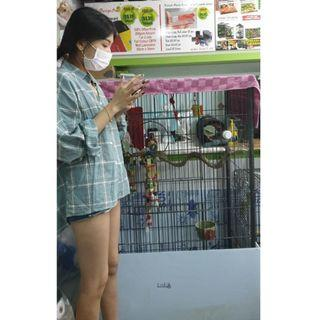 Large Parrot Cage - Custom made