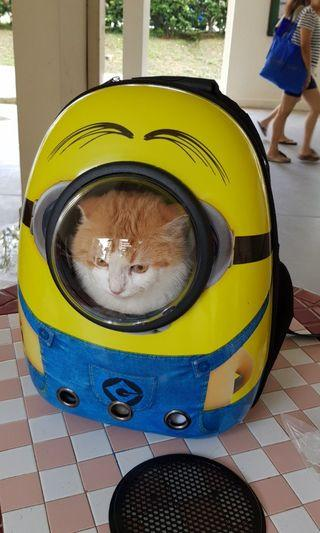 Minion Backpack Large Size Kitten Cat Rabbit  Astronaut Backpack Bubble Bag, not cat cage cat condo tree Scratching post