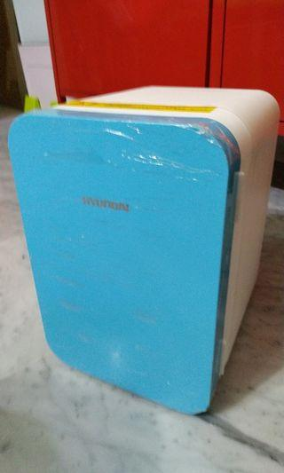Mini Fridge Cooler Warmer for Home and Car 6L