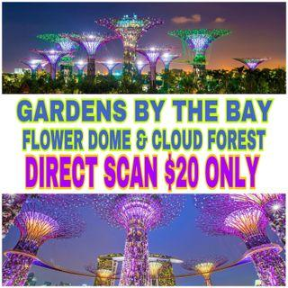 Gardens by the bay Flower Dome + Cloud Forest