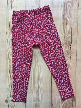 Gymboree Legging