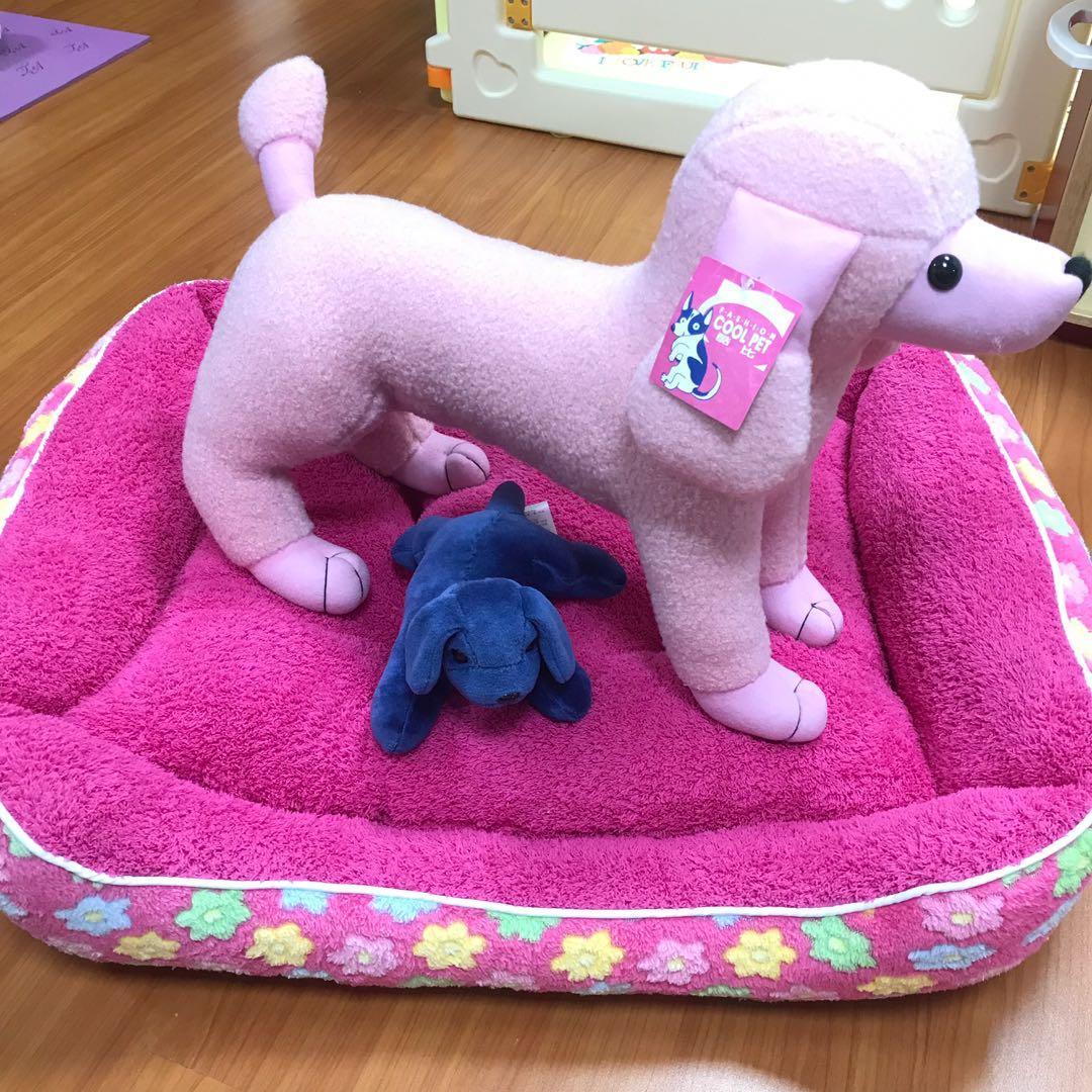 「出清」寵物沙發床