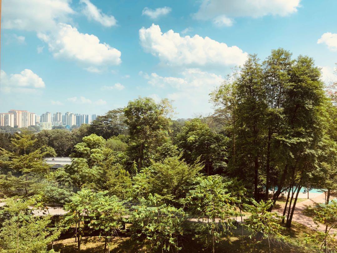 Bukit Panjang Senja Rd 4rm HDB for sale