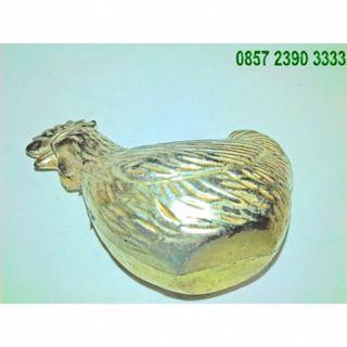 TERMURAH Ayam Koneng Sakti Tanpa Kaki YZ13602
