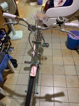 捷安特 momentum腳踏車