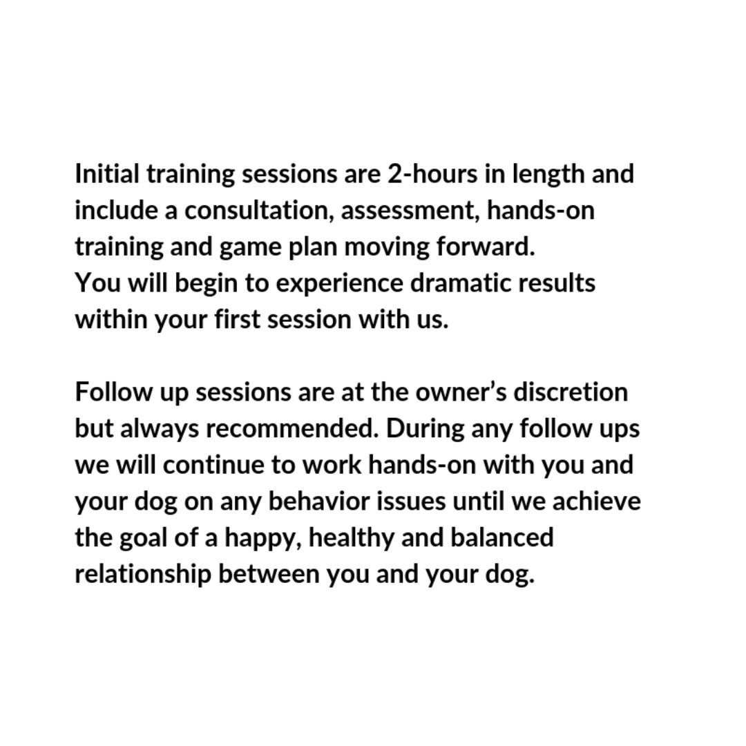 Solve your dog issues with us