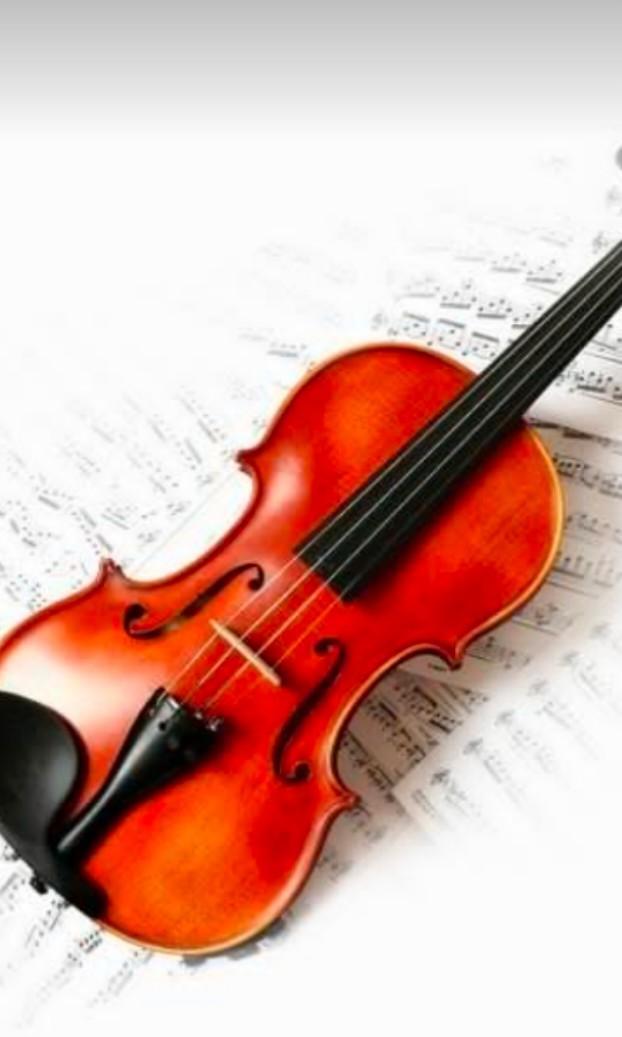 Violin 小提琴老師