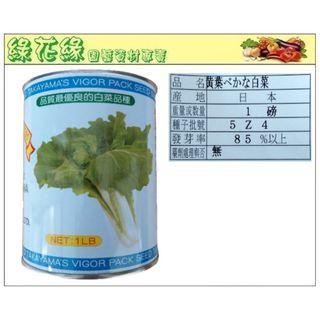 {綠花緣} 切葉白菜 日本原裝 - 1磅