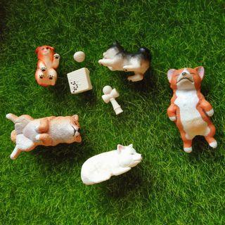 動物扭蛋們 戽斗星球 休眠動物園 柴犬