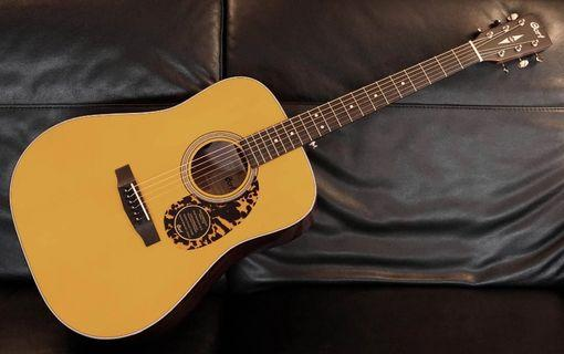 Acoustic  Cort 300vf model
