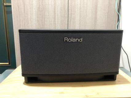 Roland Cube 樂器音箱 10瓦 CubeLite