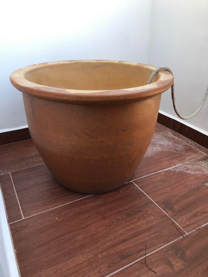 Glazed terracotta plant pots - 50cm diameter,60 cm height