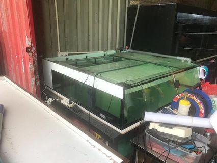 4ft by 4ft by 1ft ios tank with stand