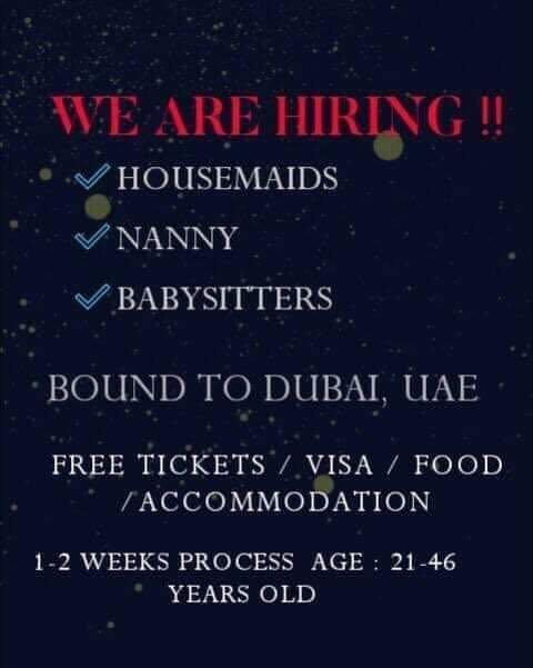 Housemaid , Nanny , Babysitter